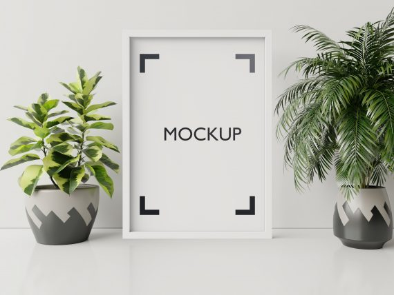 Interior poster mock up with plant pot,flower in room with white