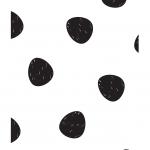 Petit panda 5